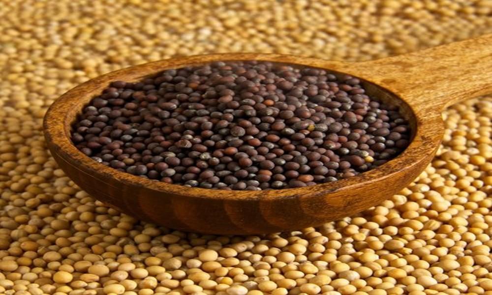 Ovo moćno seme sprečava rak, čisti krvotok, štiti srce i pluća i jača imunitet do maksimuma!