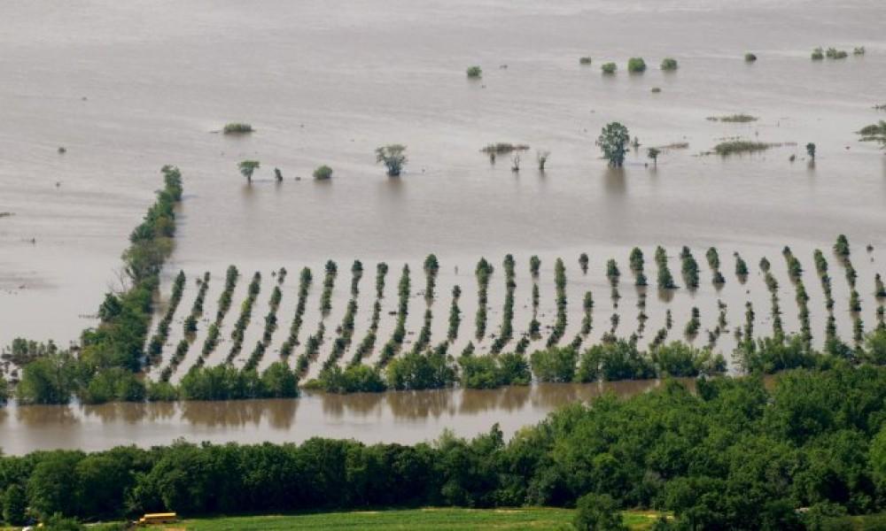 Oštećeno oko 1.000 kuća u poplavama, sledi pomoć