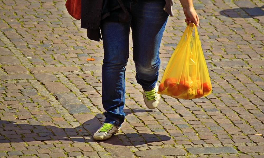Ekološke NVO podržavaju zabranu plastičnih kesa u BG