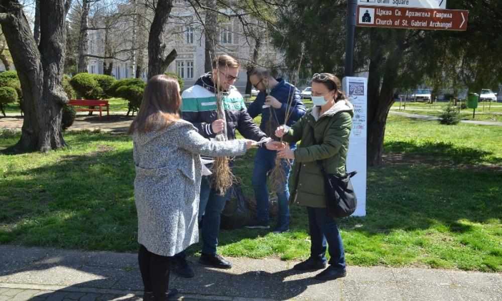 Gradištanci sade besplatne sadnice belog jasena  u akciji Posadi svoj hlad