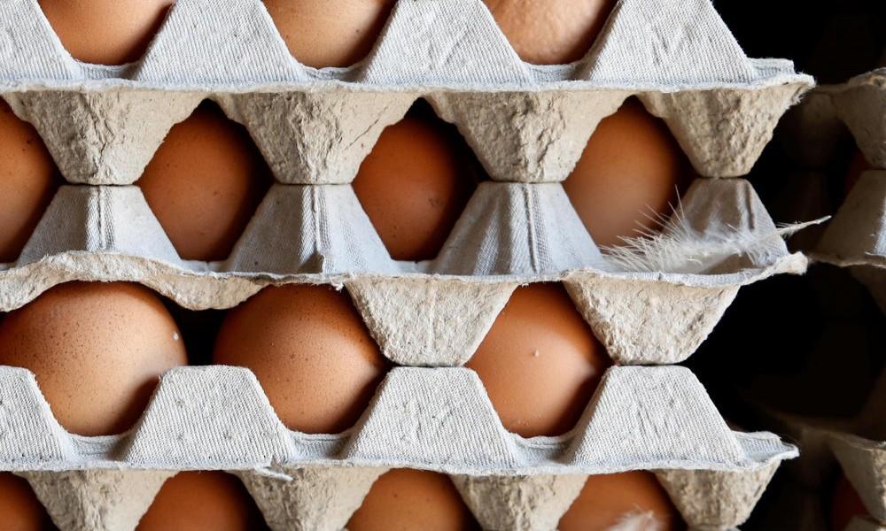 Do kraja godine dozvola za izvoz jaja i živinskog mesa u EU