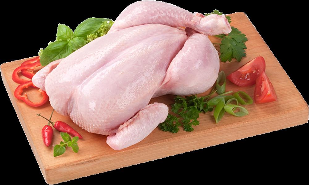 Prava isitina o piletini koja se može naći na današnjem tržištu