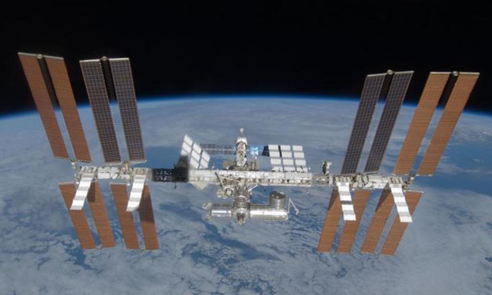 DVOGLAVI CRV IZ SVEMIRA: Eksperimenti na Međunarodnoj svemirskoj stanici stvorili MUTANTA (FOTO)