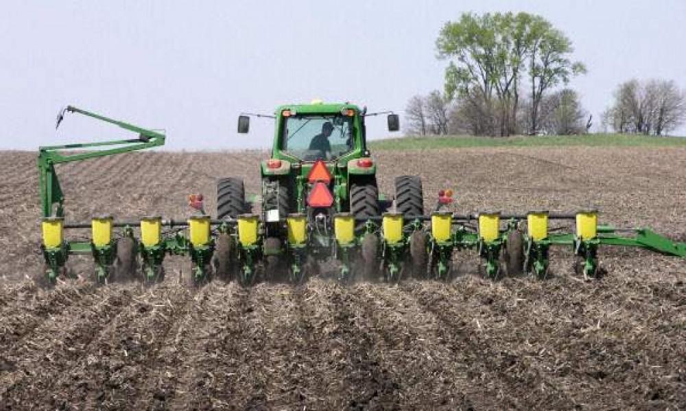 Stagnira cena kukuruza, poskupeli nafta, đubrivo, seme